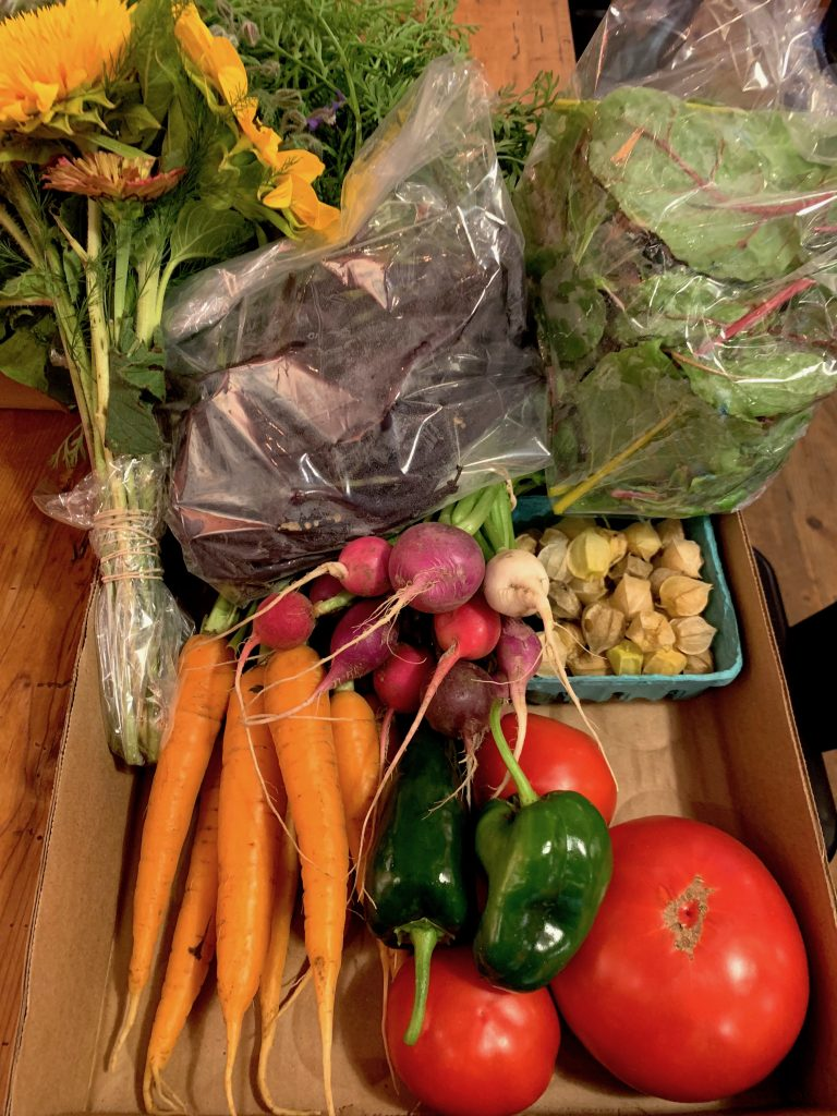 Hobbs Farm CSA 2019- Summer