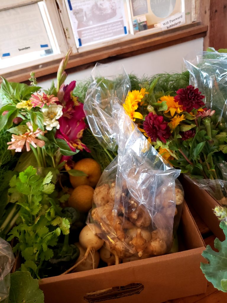 Throwback Brewery's Hobbs Farm CSA 2019- Flowers and Sunchokes